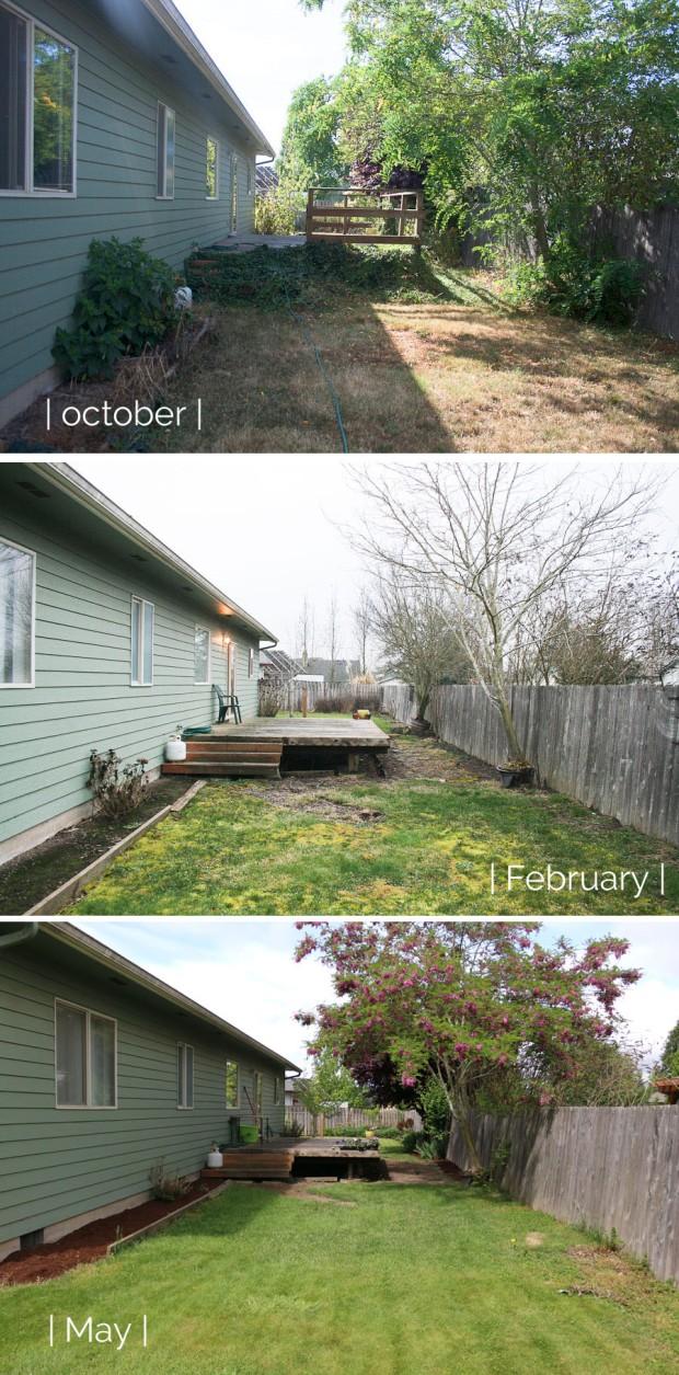 Backyard Update _May1