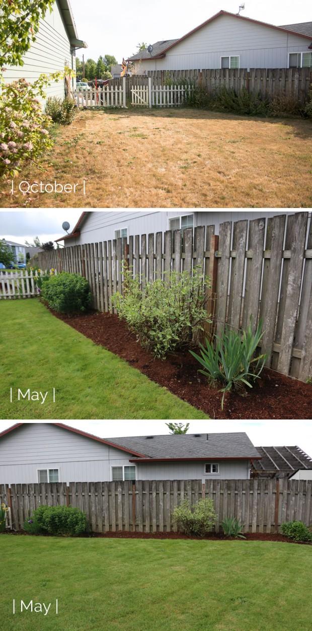 Backyard Update_May3_edited-1