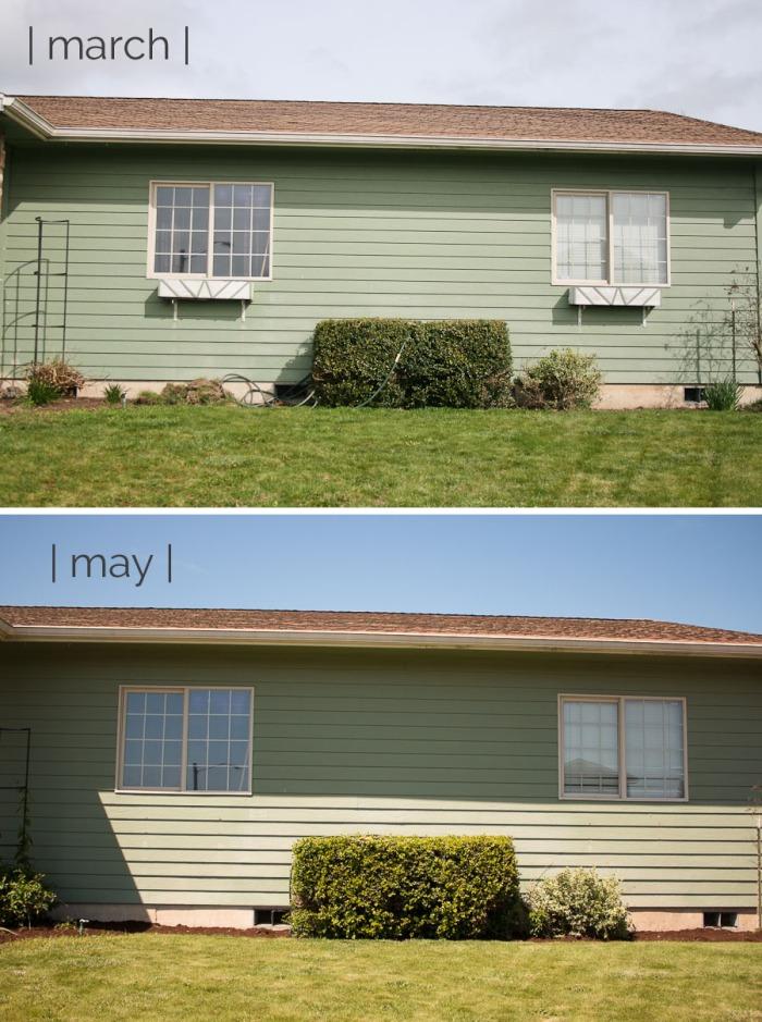 Frontyardprogressp2
